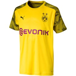 PUMA - Unisex Bvb Training Jersey With Evonik Logo