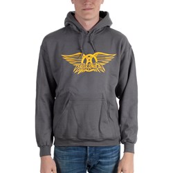 Aerosmith - Unisex-Adult Grey Wing Crest Hoodie
