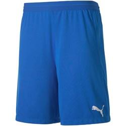 Puma - Mens Teamfinal 21 Knit Shorts