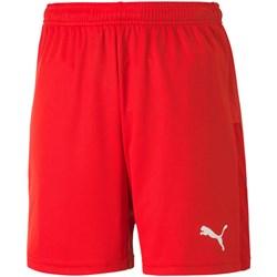 Puma - Kids Teamgoal 23 Knit Shorts