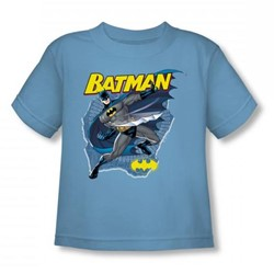 Batman - Taste The Metal Toddler T-Shirt In Carolina Blue
