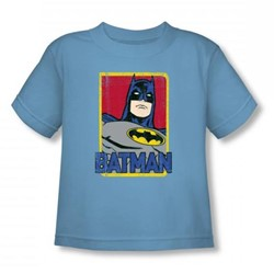 Batman - Primary Toddler T-Shirt In Carolina Blue