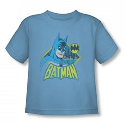 Batman - Watch Yourself Toddler T-Shirt In Carolina Blue