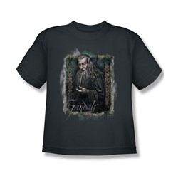 The Hobbit - Big Boys Gandalf T-Shirt In Charcoal