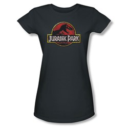Jurassic Park - Womens Stone Logo T-Shirt In Charcoal