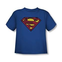 Superman - Toddler Charcoal Shield T-Shirt In Royal