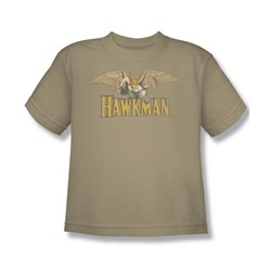 Hawkman Hawkman Big Boys S/S T-shirt in Sand by DC Comics
