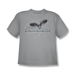 The Labyrinth - Owl Logo Big Boys T-Shirt In Silver