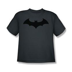 Batman - Hush Logo Big Boys T-Shirt In Charcoal