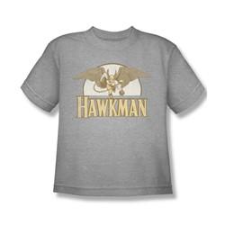 Hawkman - Fly By Big Boys T-Shirt In Heather