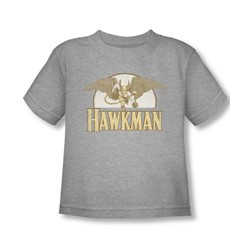 Hawkman - Fly By Toddler T-Shirt In Heather