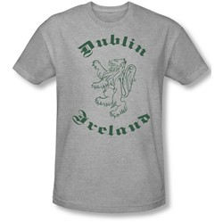 Funny Tees - Mens Dublin Ireland Slim Fit T-Shirt