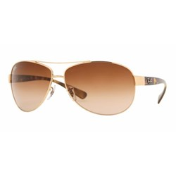 Ray-Ban RB3386 001/13 Arista Sunglasses