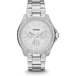 Fossil Cecile Silver Stainless Steel Watch AM4481
