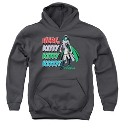 Dc - Youth Here Kitty Pullover Hoodie