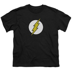 Dc - Big Boys Flash Logo T-Shirt