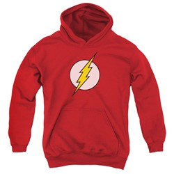 Dc - Youth Flash Logo Pullover Hoodie