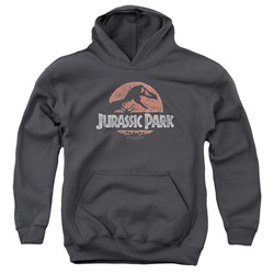 Jurassic Park - Youth Faded Logo Pullover Hoodie