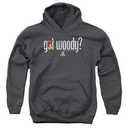 Woody Woodpecker - Youth Got Woody Pullover Hoodie