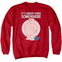 Family Guy - Mens Somewhere Sweater