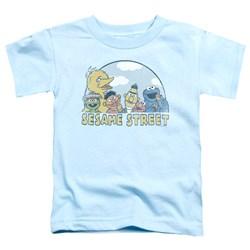 Sesame Street - Toddlers Sesame Group T-Shirt