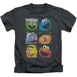 Sesame Street - Little Boys Group Squares T-Shirt