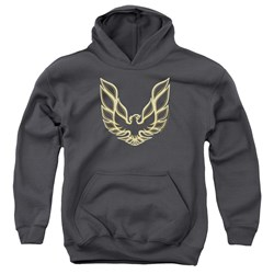 Pontiac - Youth Iconic Firebird Pullover Hoodie