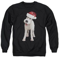Tintin - Mens Kk Snowy Front Sweater