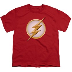 Flash - Big Boys New Logo T-Shirt