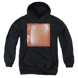 Bush - Youth Sixteen Stone Pullover Hoodie