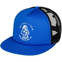 Quiksilver - Boys Shifty Youth Trucker Hat