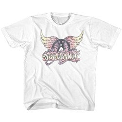 Aerosmith Unisex-Child Faded Pinks T-Shirt