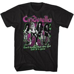 Cinderella - Mens Till Its Gone T-Shirt