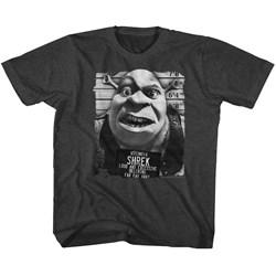 Shrek - unisex-baby Shrek Mugshot T-Shirt