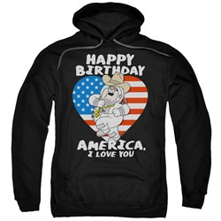 Family Guy - Mens American Love Pullover Hoodie
