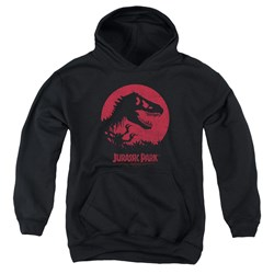 Jurassic Park - Youth T-Rex Sphere Pullover Hoodie