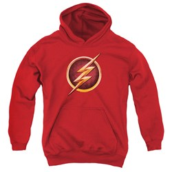 The Flash - Youth Chest Logo Pullover Hoodie