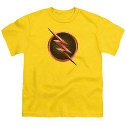 Flash - Youth Reverse Flash Logo T-Shirt