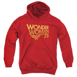 Wonder Woman - Youth Wonder Woman 75Th Anniversary Gold Logo Pullover Hoodie