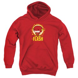 Dc Flash - Youth Flash Chibi Pullover Hoodie