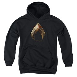 Justice League Movie - Youth Aquaman Logo Pullover Hoodie