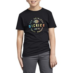 Dickies - Boys Ombre Branded Graphic T-Shirt