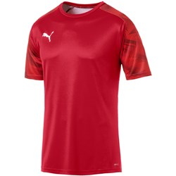 PUMA - Mens Cup Training Jersey