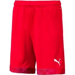 PUMA - Unisex-Child Cup Shorts