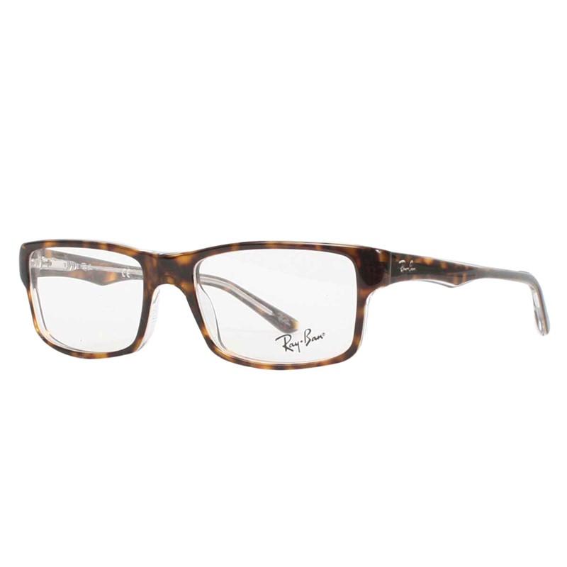 Clear Frame Sunglasses Ray Ban Louisiana Bucket Brigade